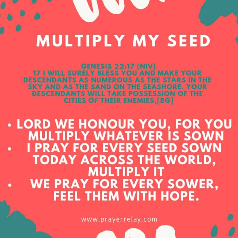 Prayer For Seed Sowing : 72 Powerful Biblical Prayer Points - The