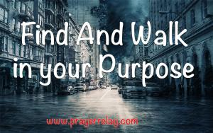 Find And Walk in your Purpose